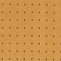 tipuri de piele si perforatii